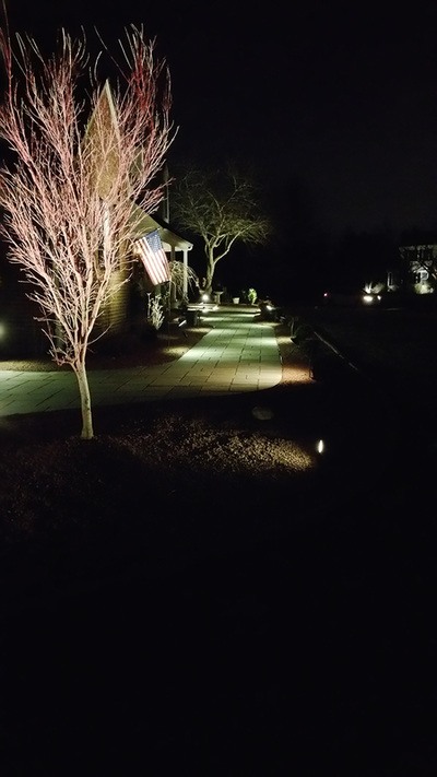 Blue Stone Walkway with Landscape Lighting